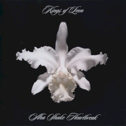 Kings Of Leon - King of the Rodeo